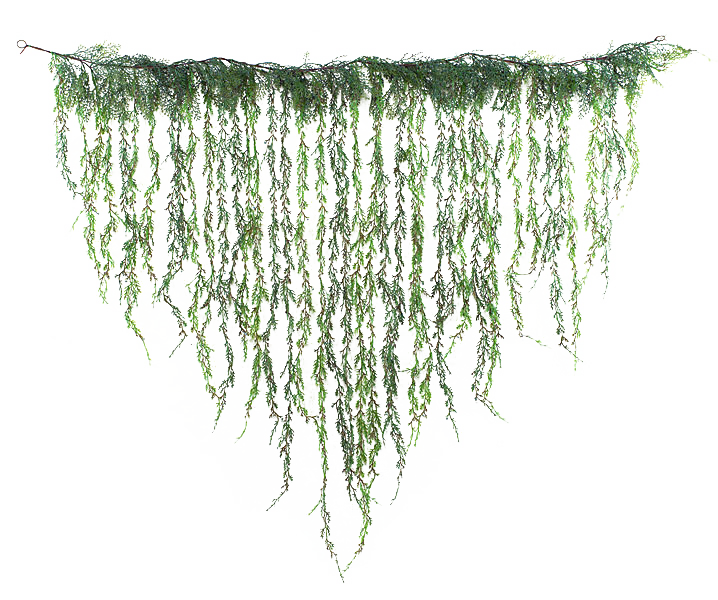 Autofol Weeping Juniper Curtain Style Garland Green